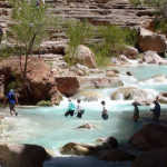 Trekking across Havasupai Creek on the way to a great swimming hole.