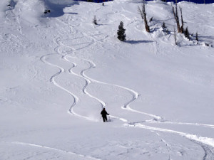 pow-tracks-slope
