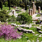 The site of Delphi is possible to visit on a day trip and is in one of the most beautiful settings you can imagine.