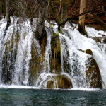 Plitvice Lakes tree waterfall