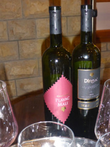 Dingac and Plavac Mali grapes grow only in Croatia and make some of the best wine Skiman and Deb have EVER had! Come explore the world of Croatian wines with us  in March.  Excellent, different, and soo inexpensive!