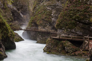 Imagine walking on this boardwalk in Vintgar Gorge! Stop imagining and do it with us!