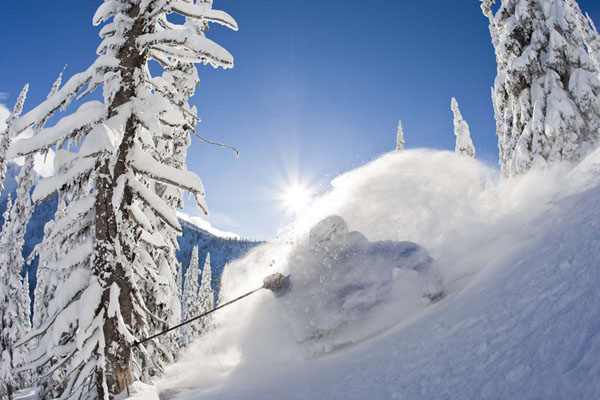 Whitewater is THE powder cache in Canada. They get the most. They get the best. And there are never crowds here!