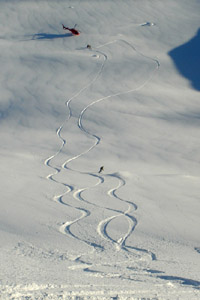 Add some tracks of your own in Haines with us in Feb.