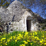 Trulli and spring flowers.... a sight seen only in Puglia.