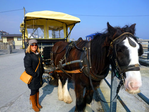 Horse-drawn carriages greet you upon ferry departure. You can have a 40 minute tour of the island's high points. The drivers are all local and are fascinating to listen to.